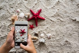 A person takes a photo with a smart phone of two red sea stars on a beach